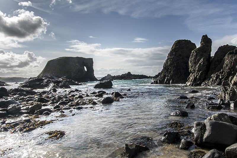 the-elephant-ballintoy-harbourg-web