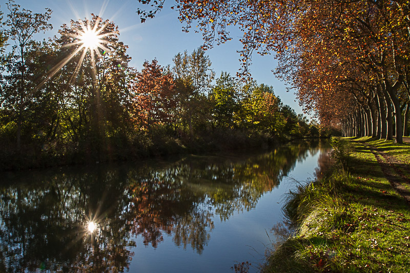 automne-canal-du-midi-toulouse29102016-img_4493