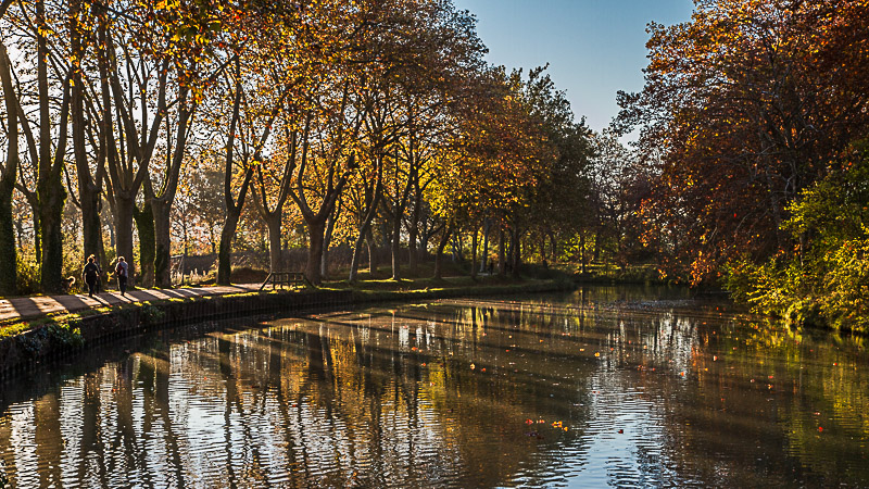 automne-canal-du-midi-toulouse29102016-img_4547